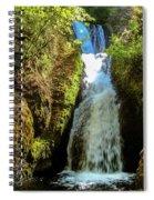 Bridal Veil Falls, Oregon Spiral Notebook