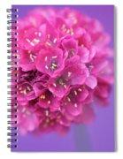 Bridesmaid  Spiral Notebook