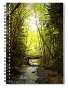 Bridge In The Rainforest Spiral Notebook