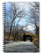 Bridge Of Colors Spiral Notebook