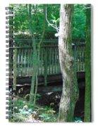 Bridge To Calm Spiral Notebook