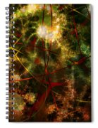 Bridges To Inner Sanctums Spiral Notebook