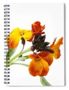 Bright And Beautiful Spiral Notebook