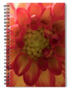 Red And Yellow Flower Bloom Spiral Notebook