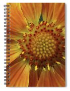 Bright And Sasy Spiral Notebook