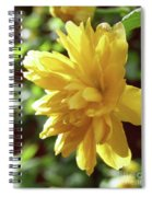 Bright As Yellow Spiral Notebook