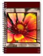 Bright Blanket Flower With Design Spiral Notebook