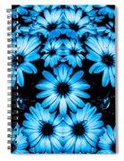 Bright Blue Daisies Spiral Notebook