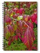 Bright Change Spiral Notebook