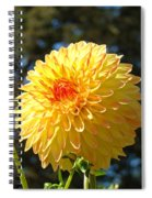 Bright Colorful Dahlia Flower Art Prints Baslee Troutman Spiral Notebook