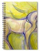Bright Dancer Spiral Notebook