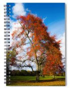 Bright Fall Colors Spiral Notebook