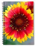 Bright Floral Day Spiral Notebook