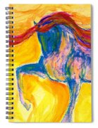 Bright Passage Spiral Notebook