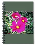 Bright Pink Flowers Spiral Notebook