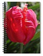 Bright Pink Tulip1 Spiral Notebook