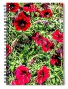 Bright Red Spiral Notebook