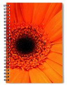 Bright Red Spiral Notebook