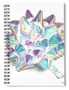 Bright Ribbon Spiral Notebook