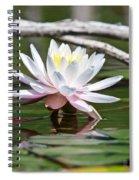 Bright Spot Spiral Notebook