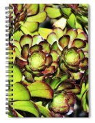 Bright Succulents Spiral Notebook