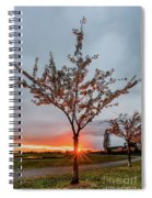 Bright Sun With Long Red Rays Shines Near The Trunk Spiral Notebook