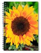 Bright Sunflower Spiral Notebook