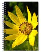 Bright Yellow Flower Spiral Notebook