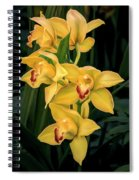 Bright Yellow Orchids Spiral Notebook