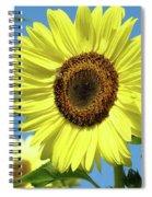 Bright Yellow Sunflower Art Prints Blue Sky Baslee Troutman Spiral Notebook