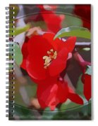 Brighter Than Spring Spiral Notebook