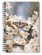 Brightness Spiral Notebook