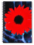 Brightness In The Evening  Spiral Notebook
