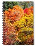 Brillant Fall Spiral Notebook