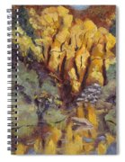 Brilliance At Service Creek Steamboat Springs Colorado Spiral Notebook