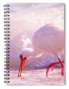 Brilliant Beauty Cortez Beach Spiral Notebook