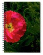 Brilliant Icelandic Poppy Spiral Notebook