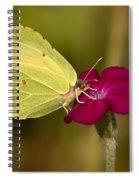 Brimstone 1 Spiral Notebook