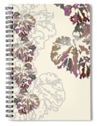 Brin Spiral Notebook