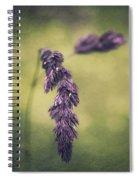 Brin D'herbe Spiral Notebook