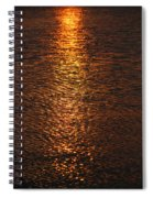 Bring Your Own Sunshine Spiral Notebook