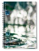 Brith Of Worlds Spiral Notebook