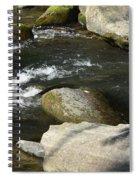 Broad River  Spiral Notebook