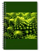 Broccoli Spiral Notebook