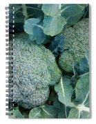 Broccoli Spiral Notebook