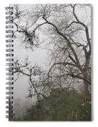 Broken Heart In  Fog Spiral Notebook