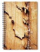 Broken Old Stump Spruce Spiral Notebook