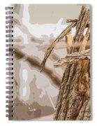 Broken Tree Base Spiral Notebook