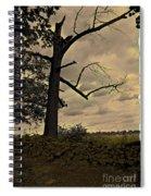 Broken Tree Spiral Notebook