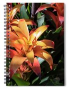Bromeliads Spiral Notebook